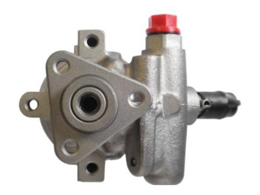 Pompe direction assistee SPIDAN 53585 (X1)