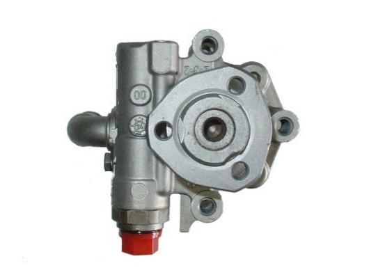 Pompe direction assistee SPIDAN 53950 (X1)