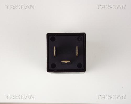 Centrale clignotante TRISCAN 1010 EP31 (X1)