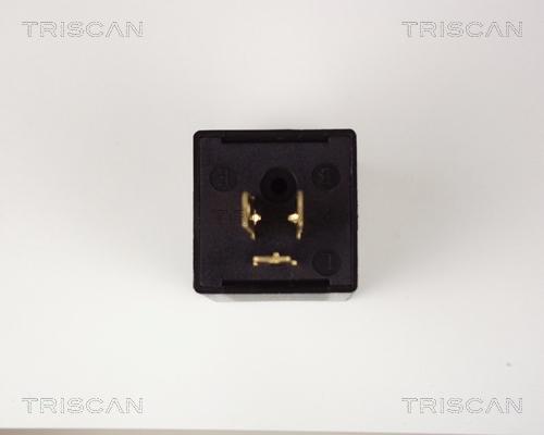 Centrale clignotante TRISCAN 1010 EP32 (X1)
