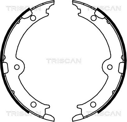 Jeu de mâchoires de frein de frein à main TRISCAN 8100 13045 (X1)