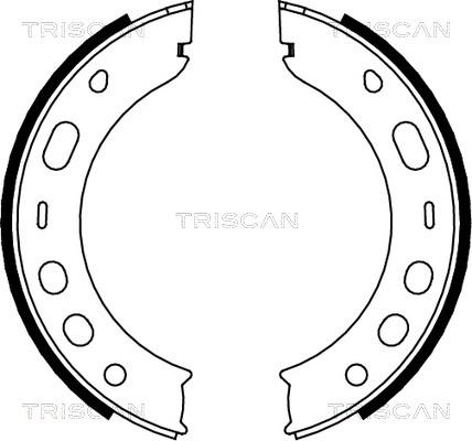 Jeu de mâchoires de frein de frein à main TRISCAN 8100 20001 (X1)
