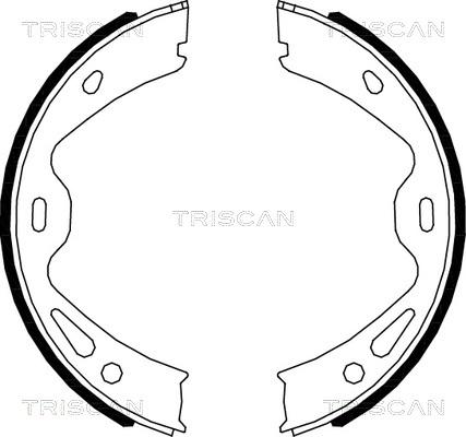 Jeu de mâchoires de frein de frein à main TRISCAN 8100 20005 (X1)
