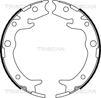 Jeu de mâchoires de frein de frein à main TRISCAN 8100 40005 (X1)