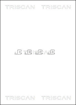 Kit de montage plaquettes de frein TRISCAN 8105 101609 (X1)