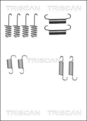 Kit d'accessoires mâchoires de frein de stationnement TRISCAN 8105 102616 (X1)