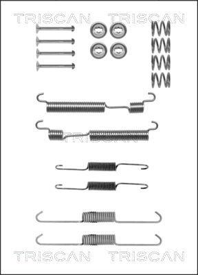 Kit de montage machoires de frein TRISCAN 8105 432001 (X1)