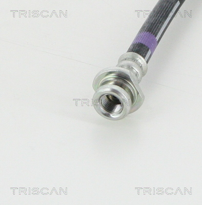 Flexible de frein TRISCAN 8150 14356 (X1)