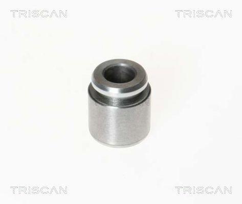 Piston etrier de frein TRISCAN 8170 232801 (X1)