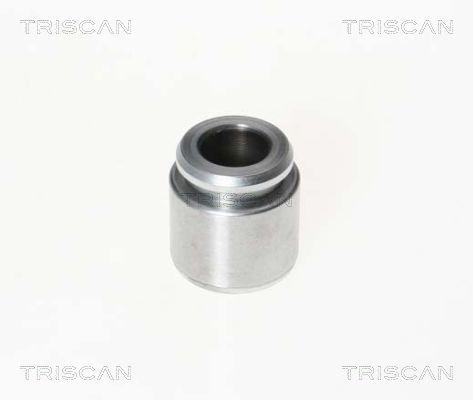 Piston etrier de frein TRISCAN 8170 233023 (X1)