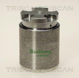 Piston etrier de frein TRISCAN 8170 233411 (X1)
