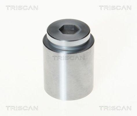Piston etrier de frein TRISCAN 8170 233604 (X1)