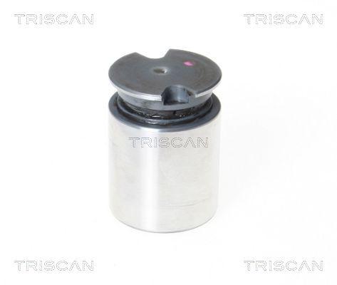 Piston etrier de frein TRISCAN 8170 233634 (X1)