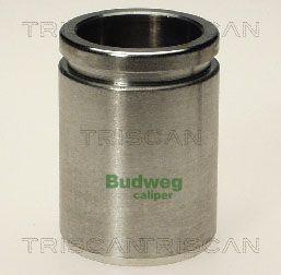 Piston etrier de frein TRISCAN 8170 233812 (X1)