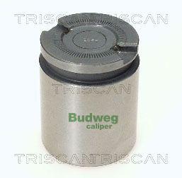 Piston etrier de frein TRISCAN 8170 234101 (X1)