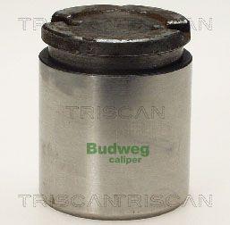 Piston etrier de frein TRISCAN 8170 234315 (X1)