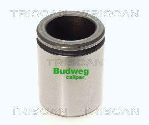 Piston etrier de frein TRISCAN 8170 234415 (X1)
