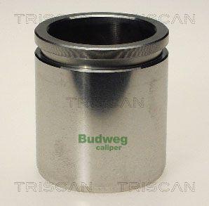 Piston etrier de frein TRISCAN 8170 234810 (X1)