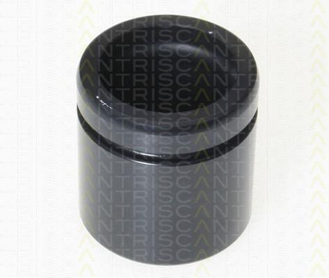 Piston etrier de frein TRISCAN 8170 234873 (X1)