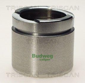 Piston etrier de frein TRISCAN 8170 235203 (X1)