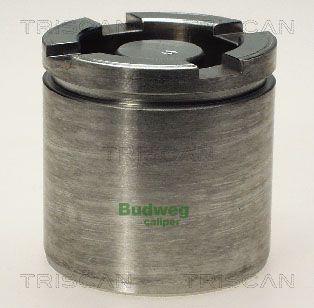 Piston etrier de frein TRISCAN 8170 235459 (X1)