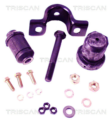 Eléments bras de suspension TRISCAN 8500 29020 (X1)