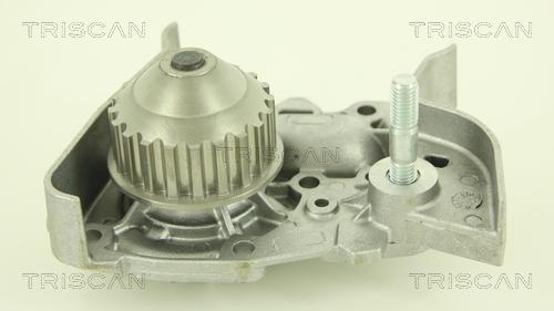 Pompe a eau TRISCAN 8600 25009 (X1)