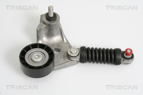 Tendeur de courroie d'accessoires TRISCAN 8641 163008 (X1)