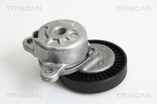 Tendeur de courroie d'accessoires TRISCAN 8641 173003 (X1)