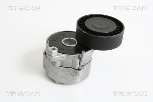Tendeur de courroie d'accessoires TRISCAN 8641 173004 (X1)