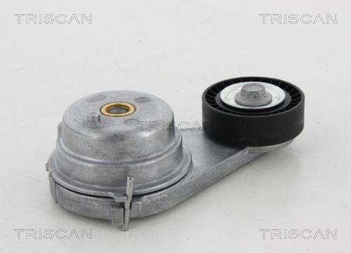 Galet tendeur accessoires TRISCAN 8641 231023 (X1)