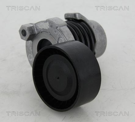 Galet tendeur accessoires TRISCAN 8641 253012 (X1)