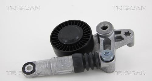 Tendeur de courroie d'accessoires TRISCAN 8641 293039 (X1)