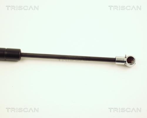 Verin de coffre TRISCAN 8710 23204 (X1)