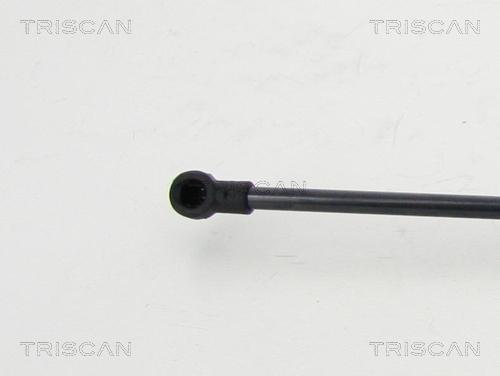 Verin de coffre TRISCAN 8710 25270 (X1)