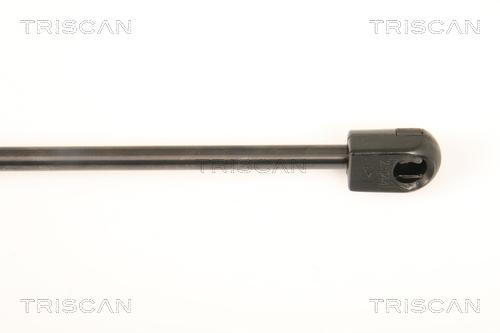 Verin de lunette TRISCAN 8710 43233 (X1)