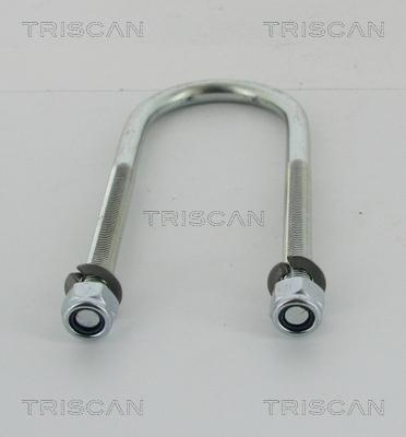 Bride lame de ressort TRISCAN 8765 100006 (X1)