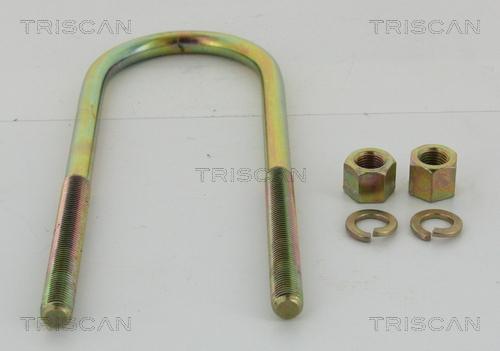 Bride lame de ressort TRISCAN 8765 100007 (X1)