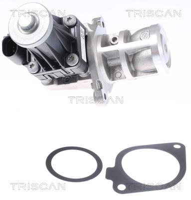 Vanne EGR TRISCAN 8813 10032 (X1)