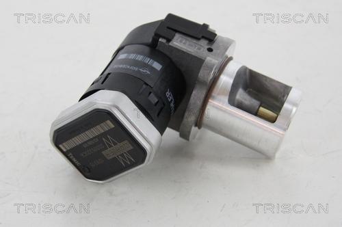 Vanne EGR TRISCAN 8813 23101 (X1)