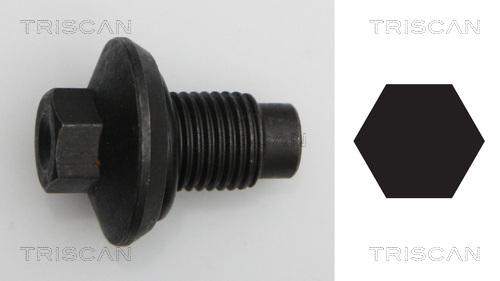 Bouchon de vidange TRISCAN 9500 1009 (X1)