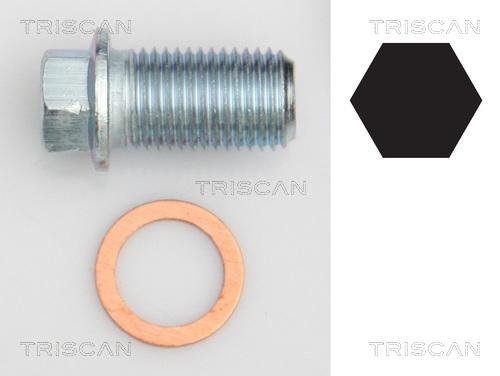 Bouchon de vidange TRISCAN 9500 1012 (X1)