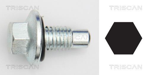 Bouchon de vidange TRISCAN 9500 2405 (X1)