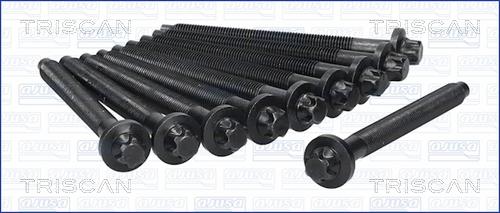 Vis de culasse TRISCAN 98-5523 (X1)