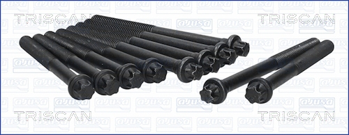 Vis de culasse TRISCAN 98-6000 (X1)