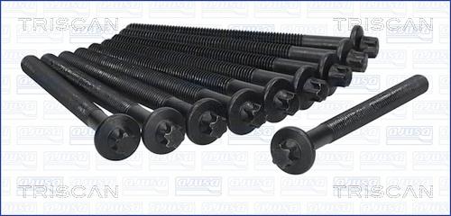 Vis de culasse TRISCAN 98-6012 (X1)
