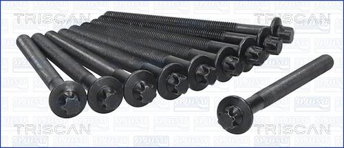 Vis de culasse TRISCAN 98-6013 (X1)
