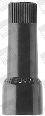 Capuchon de bougie BERU C4-570 (X1)