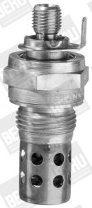 Bougie de prechauffage BERU GF163 (X1)