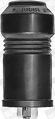 Allumage BERU WVES5 (X1)